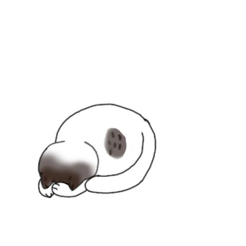 1肉球 5b0fa